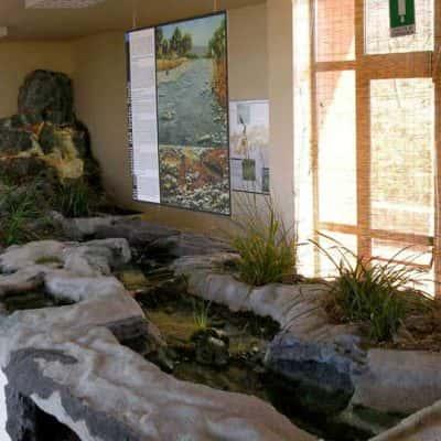Riproduzione di habitat naturalistico