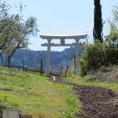 Ingresso al Tempio Jinja di San Marino